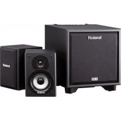 Roland CM-110: CUBE Monitor 2.1