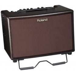 Roland AC 60 Acoustic Cube RW