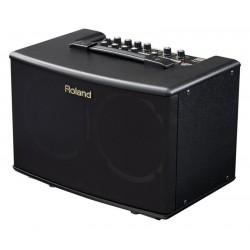 Roland AC-40 Acoustic Cube