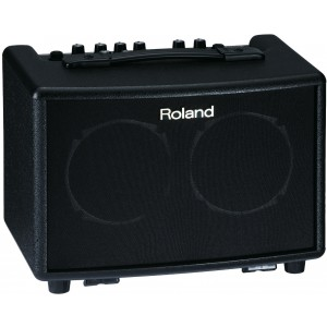 Roland AC-33 Acoustic Cube