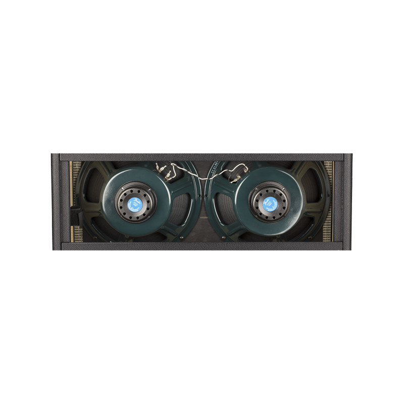230V EUR FENDER Tone Master® Twin Reverb®-Amp