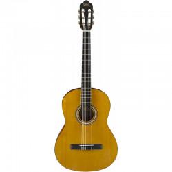 Valencia Guitarpakke