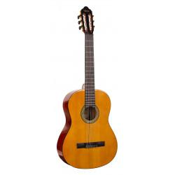 Valencia Model 264 Guitarpakke  4/4 fuld størelse